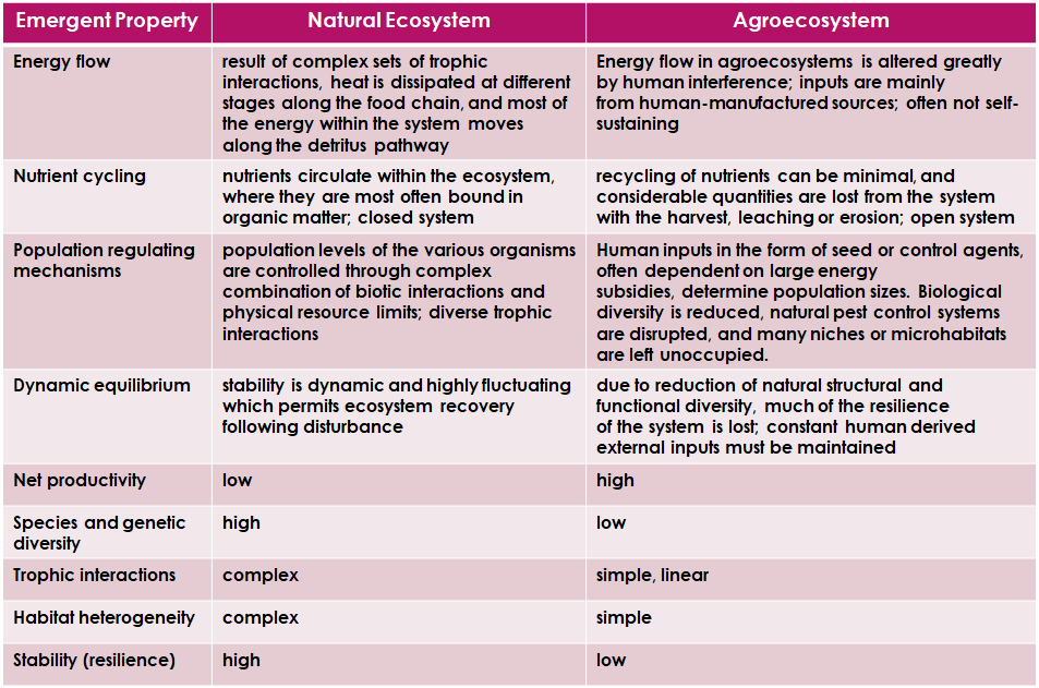 Agroecosystem and the Rise of Agroecology for 8 Billion People 1